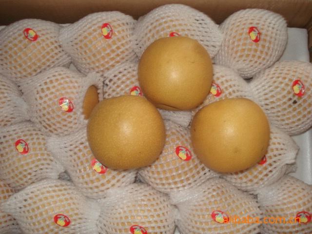 金沙果品供应丰水梨,皮薄味美、香甜可口。