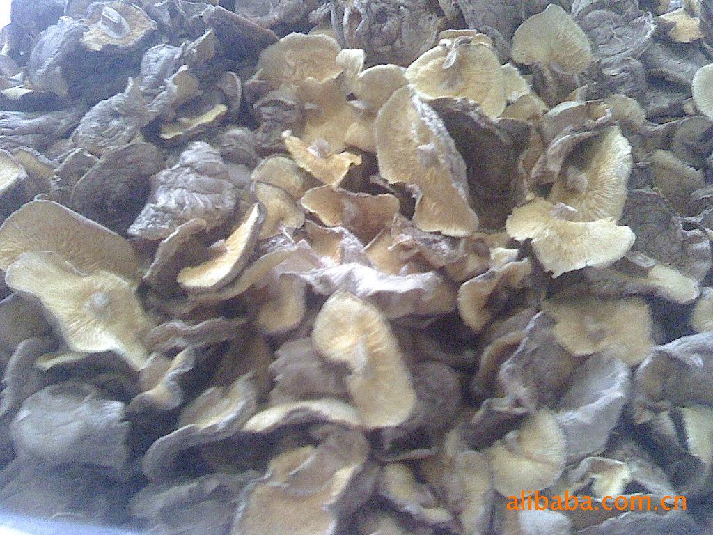 产地批发 新货 特级香菇/花菇/香菇干/冬菇 一手
