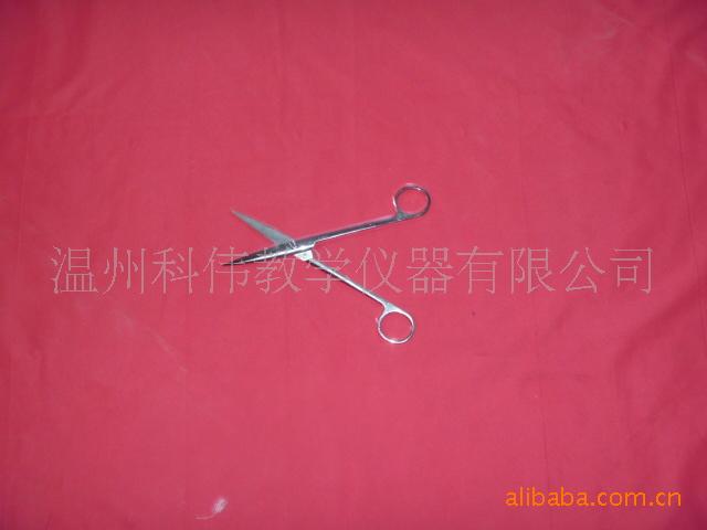 供应卫生仪器剪刀/不锈钢剪刀/医用剪刀