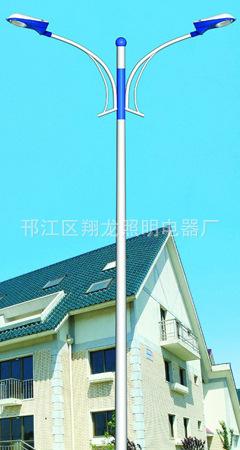 供应翔龙照明DL-192厂家生产 户外灯具8米太阳能路灯图片_7