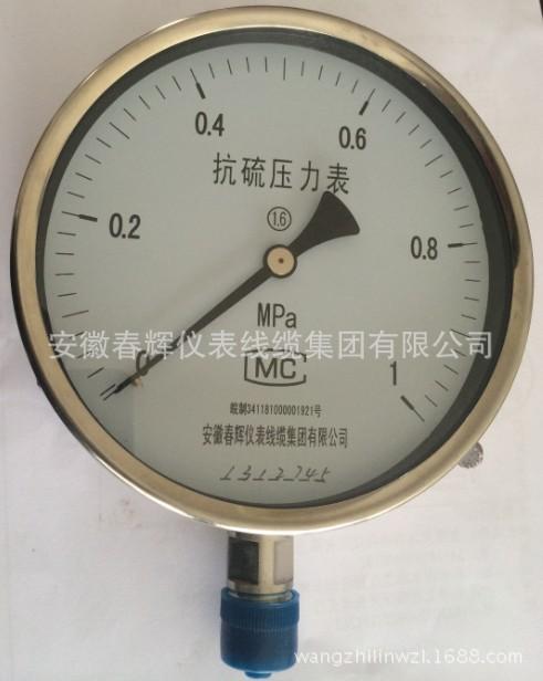 抗硫压力表