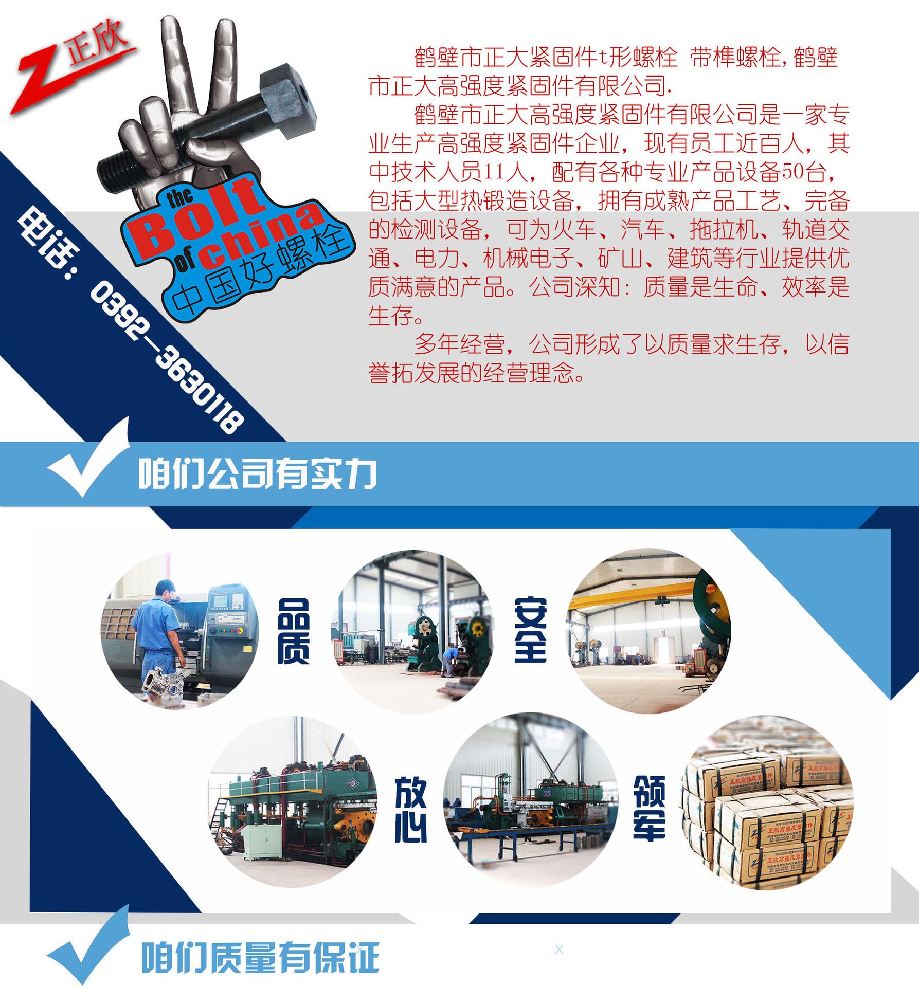 专业螺丝制造紧固件螺丝、圆头梯形高强度紧固件、 、批量