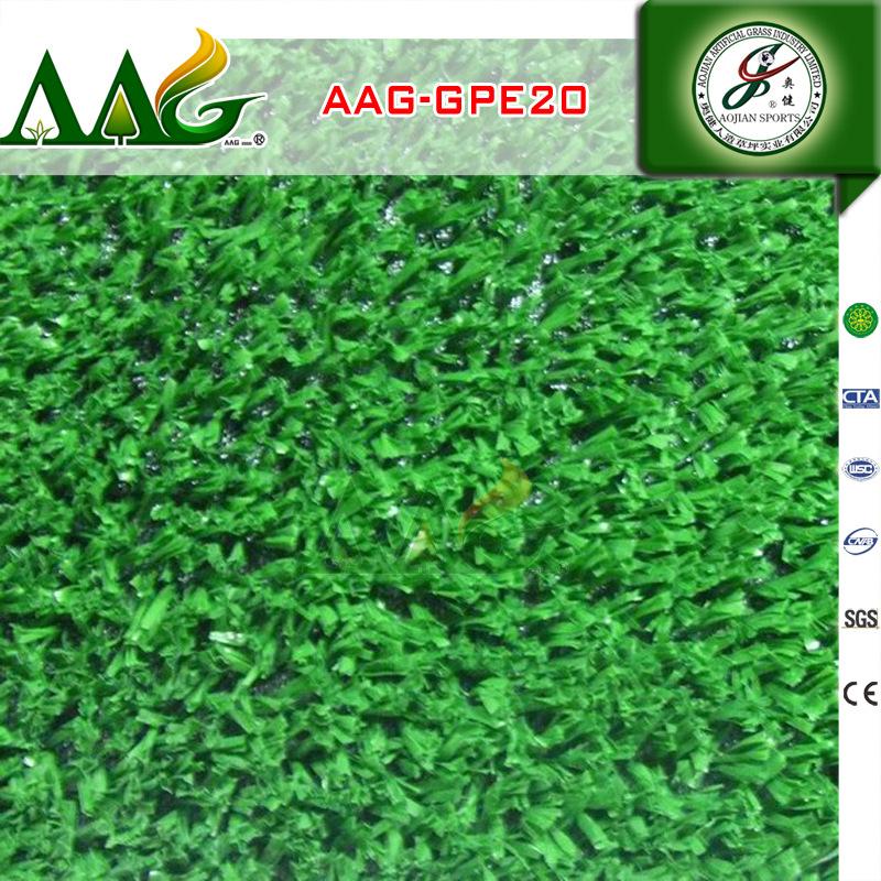 AAG-GPE20 (4)