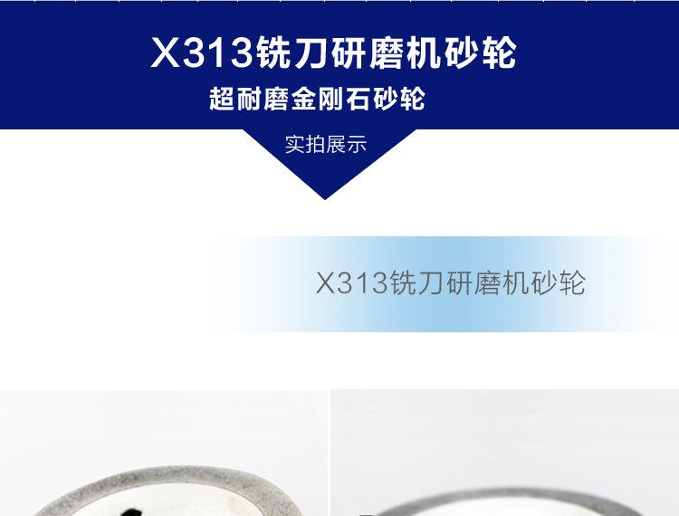 X313_01