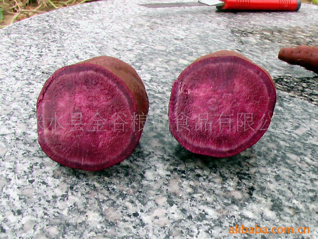 供应河北野三坡特产  黑红薯